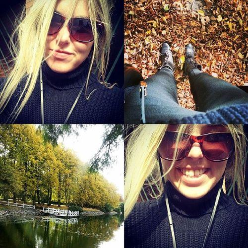 Hösten är ganska så trevlig. Solenlysergottifacet Lövenharsåfinafärger Musikiöronen Terapi bootsmalmööösomtimbaktusjunger