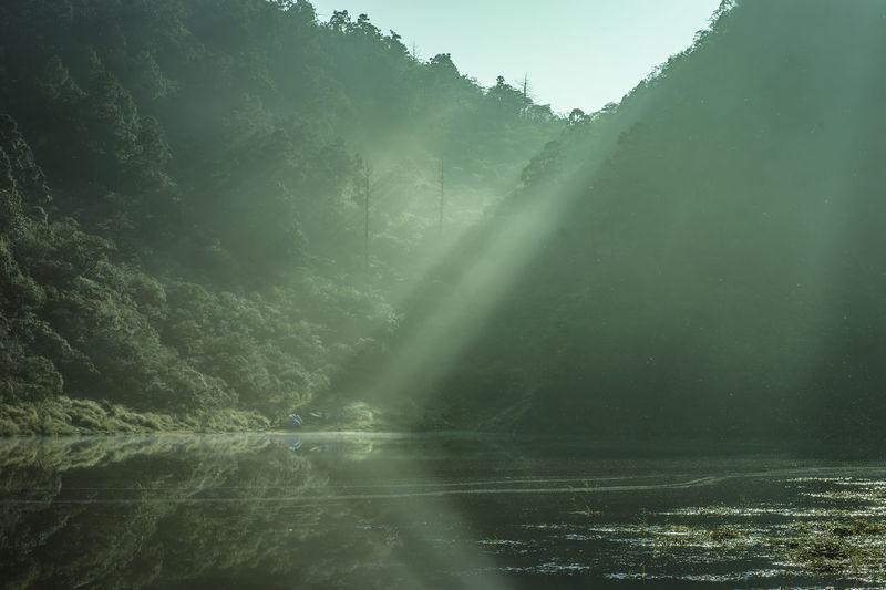 Sunlight streaming through trees in lake against sky