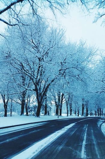Beautiful Winter Morning Winter Wonderland Snow ❄ Keep Snowing Branch Road Nature Winter Cold Temperature No People First Eyeem Photo EyeEm Best Shots Winter Beauty  The Week On EyeEem The Week Of Eyeem Street Photography Good Pictures Perfect Moment Beautiful Morning Snow Day