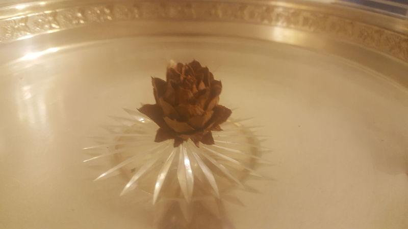 Dead Rose Tray Rose🌹 Dry Rose EyeEmNewHere