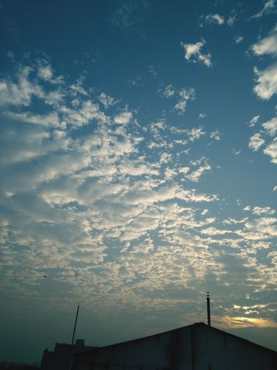 Sunrise > Netflix. Sky And Clouds Skyline Blue Sky Hues Of Blues Dawn No Sleep White Clouds Sun Sky New Day Nature Nature_perfection Photooftheday EyeEm EyeEm Best Shots EyeEmNewHere EyeEm Selects EyeEm Best Edits Eyeem Market EyeEm Best Shots - Landscape eyeemphoto EyeEm Best Shots - Sunsets + Sunrise EyeEm The Best Shots Serene