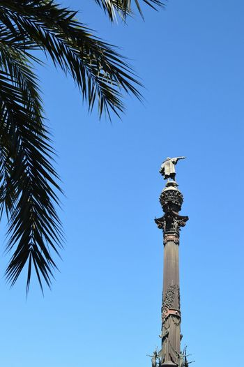 Barcelona Palm SPAIN Columbus Monument A Colòn