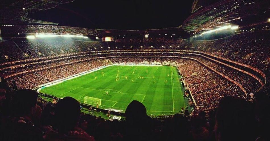 Home 😍 Benfica Slb Estadiodaluz Rumoao35 Football