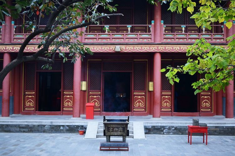 Architecture Beijing Building Exterior Built Structure China Day Door Entrance Front Door Gold Colour Lama Temple No People Red Religion Religious  Religious Architecture Temple Trees