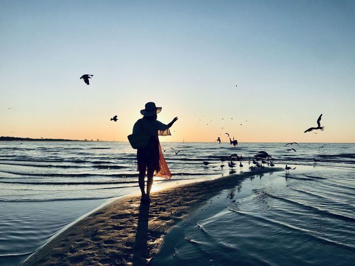 Rear view of woman feeding birds beach against sky during sunset