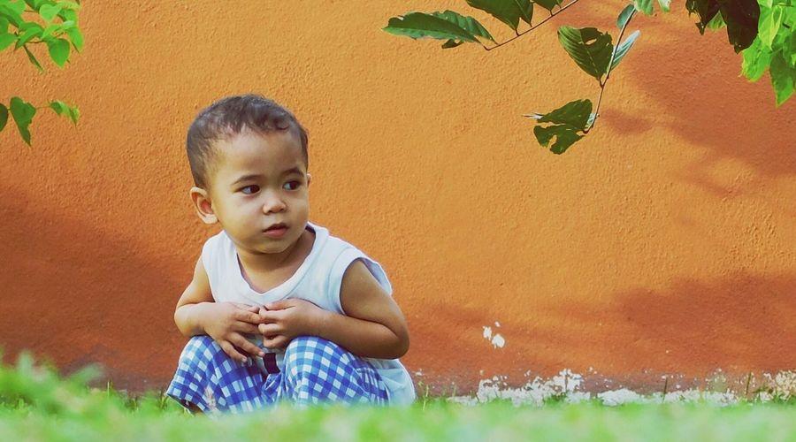 Nephew Outdoor