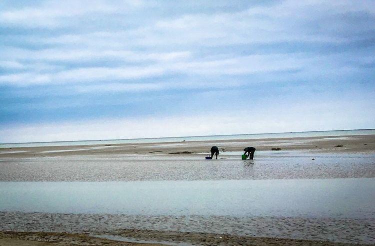 Baie De Somme  Fisherman Sea Sand Landscape Landscape_Collection Nature Men Fishing Nature_collection Capture The Moment Landscape_photography Beach Sea And Sky