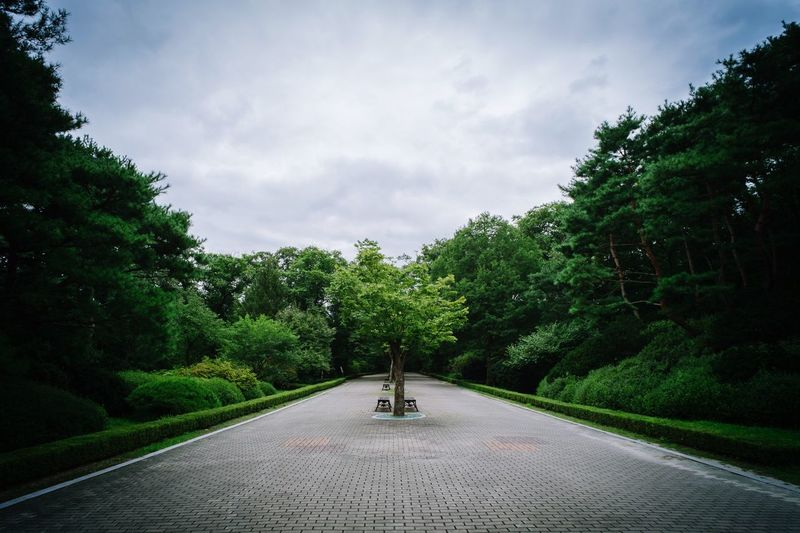 Empty walkway amidst trees at park against cloudy sky