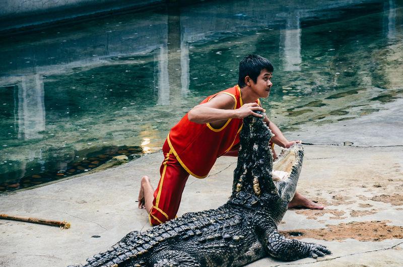 crocodile Nature จระเข้ ฟาร์มจระเข้ Crocodile Crocodiles Crocodile Farm Crocodile Eyes สมุทรปราการ