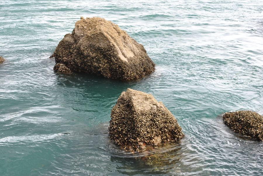 Rocks in the Ocean Taking Photos