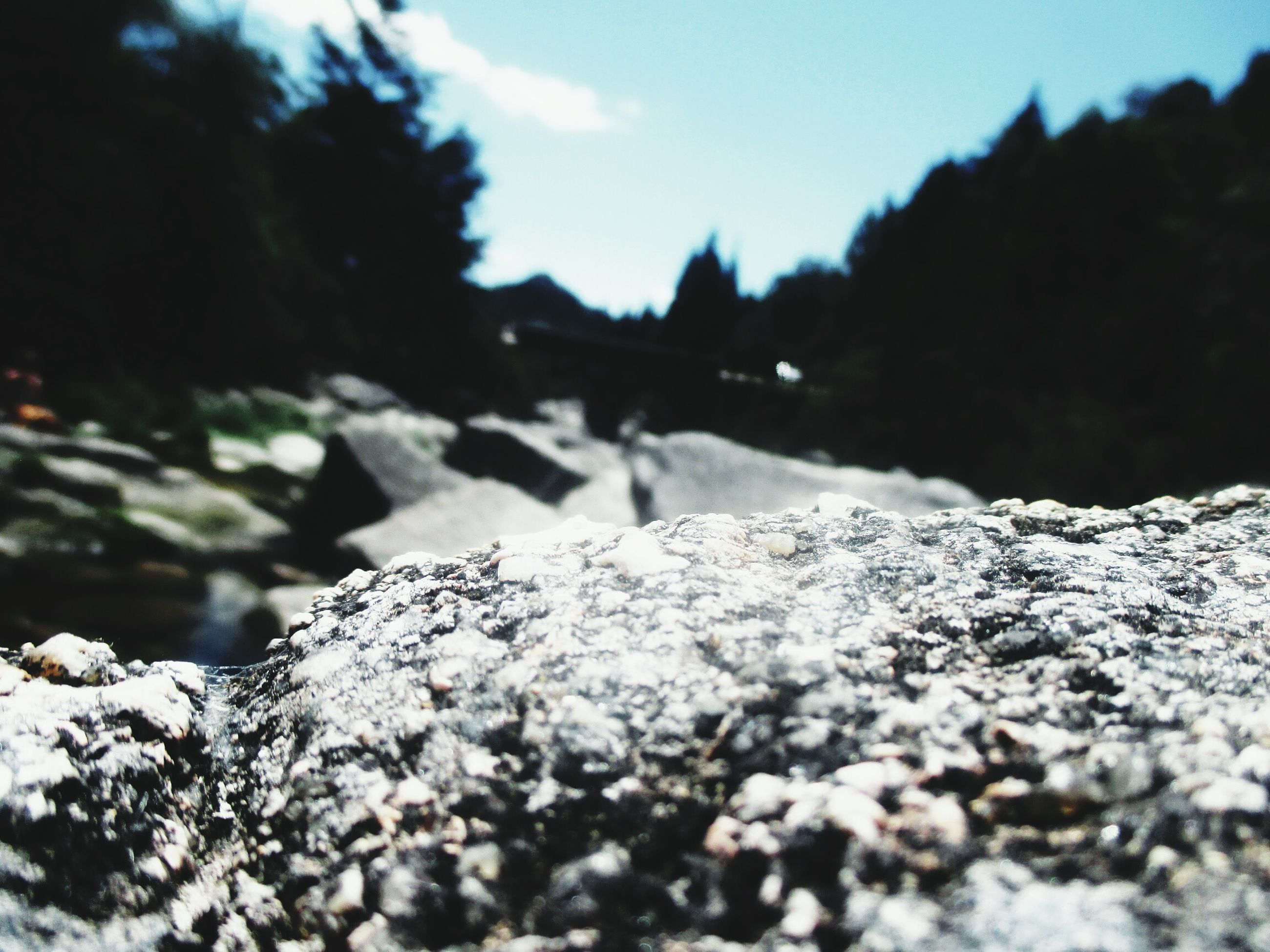 nature, rock - object, selective focus, outdoors, day, mountain, beauty in nature, no people, tranquility, close-up, water, sky, scenics, snow, pebble beach