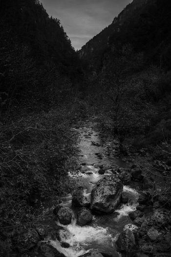 Blackandwhite Nature River Landscape