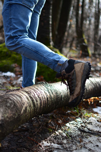 Hiker in the path Adult Autumn Boots Dirty Mirror Foot Hiking Holiday Print Shoe Tree Trekking Winter Climbing Close-up Dirty Equipment Forest Ground Hiker Sport Spring Step Trail Trunk Walking
