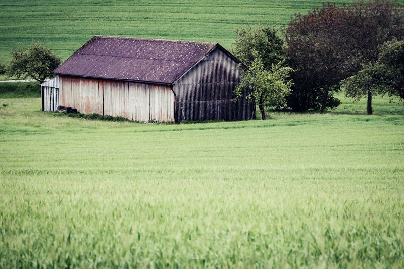 Barn on field by house