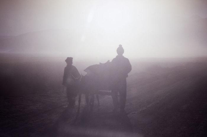 Day Domestic Animals Fog Lassa Mammal Nature Outdoors People Real People Shadow Shadows Shadows & Lights Tibet Tibetan  Two People Working Animal