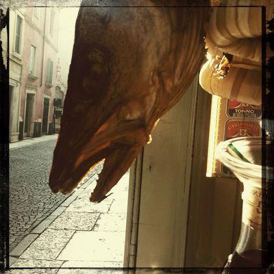EyeEm Meetup Verona
