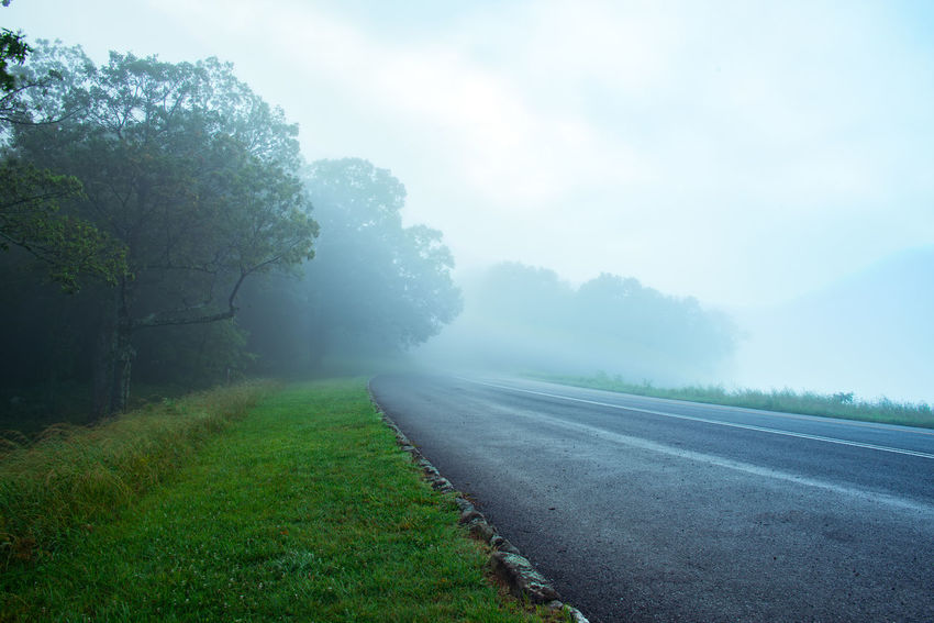 A misty Blue Ridge Parkway Fog Foggy Grass Landscape Mist Morning No People Outdoors Road Sky Street The Way Forward Transportation Trees Virginia
