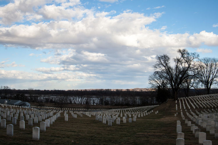 Jefferson Barracks National Cemetary Peace Respect Trees Beautiful Skies Cloud - Sky Columns Day Graves Military Cemetery Nature No People Outdoors Rows Sky St Louis Missouri Tree Trees And Sky
