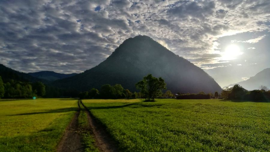 way to go Sunrise Morning Morning Light Path In Nature Agriculture Eye4photography  Switzerland Interlaken Berner Oberland Bernese Oberland Tree Mountain Rural Scene Field City Sky Landscape Cloud - Sky Agricultural Field Farmland