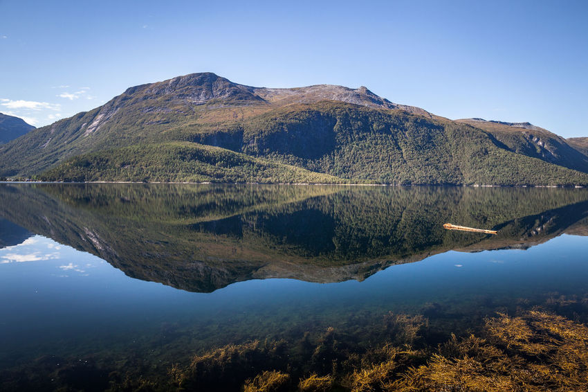 Calm Eikesdalen Ersfjord Norway Beauty In Nature Day Ersfjordbotn Ersfjorden Fjord Idyllic Lake Landsape Mountain Mountain Peak Mountain Range Nature No People No Wind Non-urban Scene Outdoors Plant Reflection Scenics - Nature Sky Tranquil Scene Tranquility Tree Water Waterfront