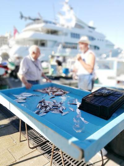 Togetherness Nautical Vessel Sky Marseille, France France🇫🇷 Harbor Fish Mid Adult Fishmarkets