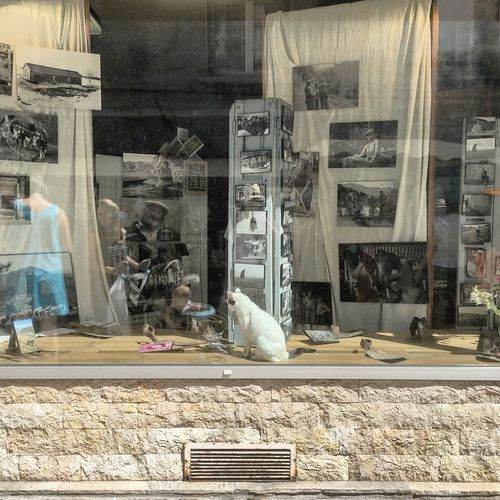 Une été française / A French summer n.17 Window Display Store Oldfashioned Architecture Objectivism Newtopographics France Ontheroad Adventure Reflection