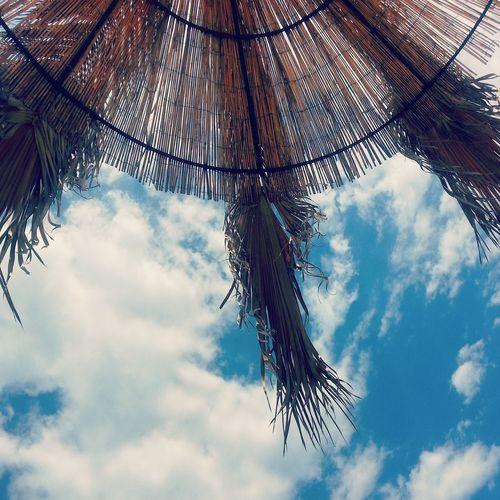 Il santo polleggio post sessione estiva Summer On A Solitary Beach Sun, Sea And Palm Skyporn