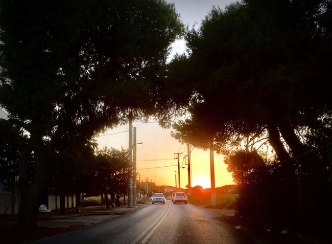 Tree Car Land Vehicle Road Transportation Street Sunset Street Light Silhouette Nature Sky Outdoors