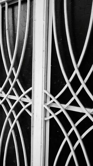 Secret Garden Windows Black Glasses