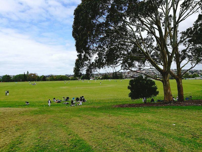 Park Yourself Cricket Field Cricket! Cricket Ground Tree Sport Sports Team Sportsman Competitive Sport Playing Field Sports Clothing Field Sky Grass