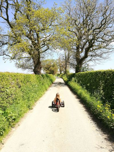 Girl Riding Tricycle On Footpath Against Trees