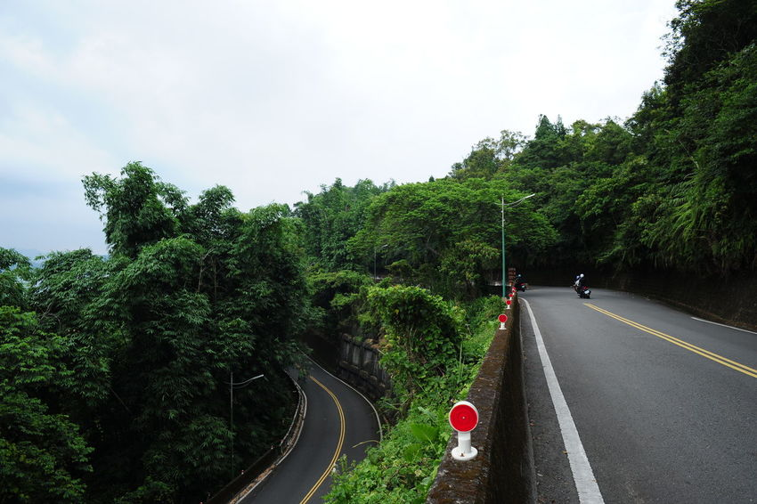 24mm F2.8 D700 Day Growth Horizontal Jin Nature Nikon No People Outdoors Road Sky Sunmoonlake The Way Forward Tree 日月潭