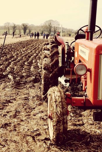 Red Tractor Massey Ferguson Ploughing Day Nature Land Vehicle Transportation Mode Of Transportation Occupation Real People Men Agricultural Machinery Tractor
