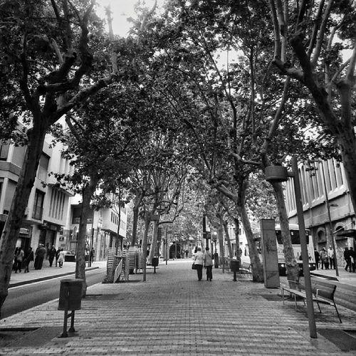 Ramblas de Egara Barcelona Igerscatalunya Igersbarcelona Terrassa blackandwhite igersvenezuela_byn hdr insta_bwgramers instapic