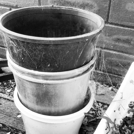 Spider Web Blackandwhite Photography Pots And Pans Visions Of Emptyness