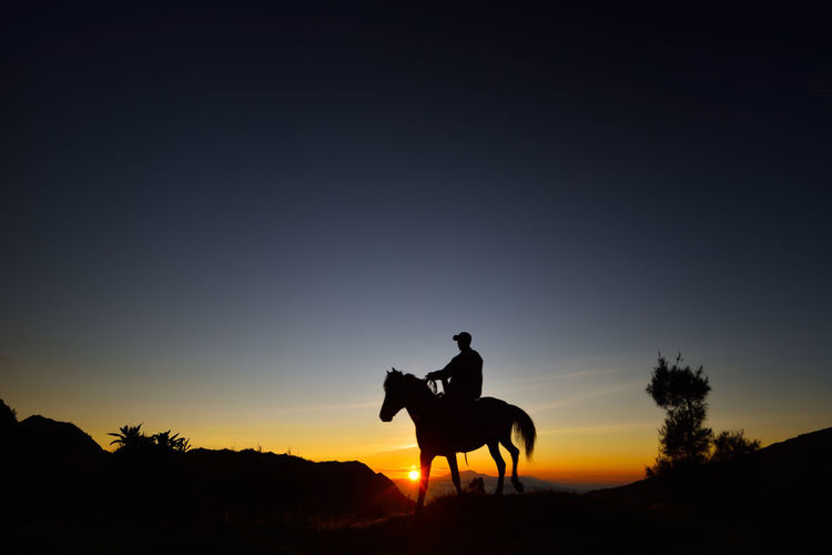 Silhouette man riding horse at sunset