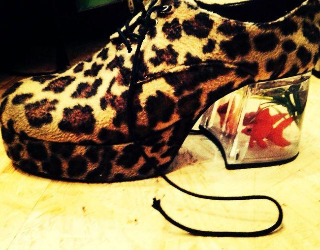 Crazy Schuhe