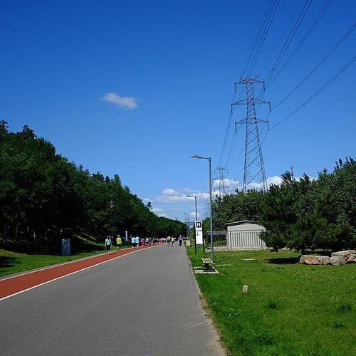 Nice Weather Blue Sky Lane green park road sunny