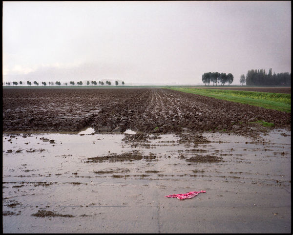 6x7 Format Agriculture Analogue Photography Landscape Nature No People Outdoors Strijensas Tranquility
