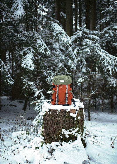 Snow Tree Trunk Trunk Fir Tree Wood - Material Outdoors Forest Nature Cold Temperature Winter Tree Backpack Hiking Hikingadventures Coniferous Tree