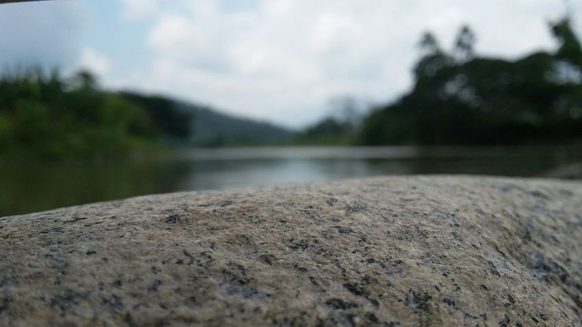 Capturing Freedom Nature Photography Stone at River View Kota Belud