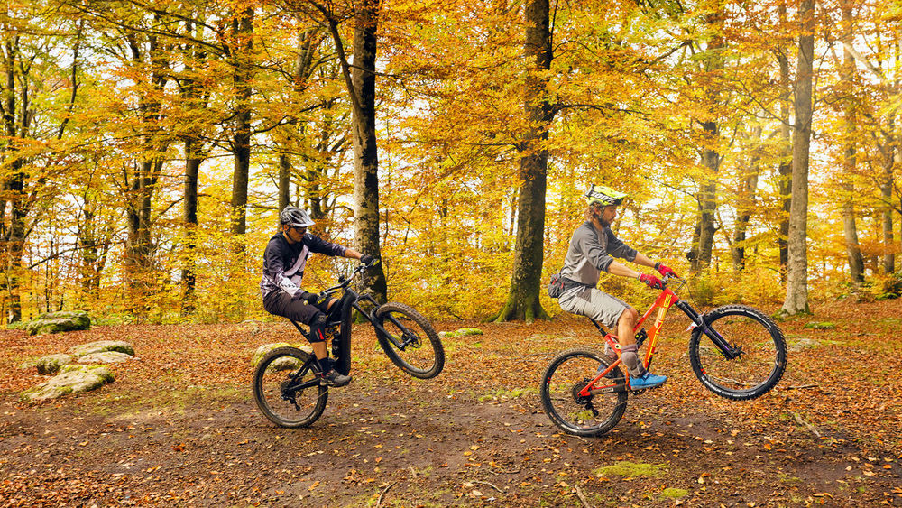 Soriano del Cimino (VT), Italy - 11 November 2018: two guys on a mountain bike ride a trail in the beech forest, lifting the bicycle on a single wheel. In the background the trees and the fallen leaves with the warm colors of autumn. Autumn Tree Sport Bicycle Forest Land Change Nature Lifestyles Leisure Activity Motion Activity Plant Exercising Ride Riding Vitality Transportation Healthy Lifestyle Day Outdoors WoodLand MTB Biking Mtblife MTB