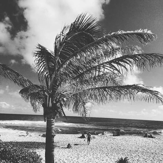In a world where everyone is Overexposed the coolest thing you can do is maintain your mystery... Sandcastles Sunshine Swimming Enjoying The Sun Relaxing Surfing Island Hawaii Blackandwhite Blackandwhitephotography