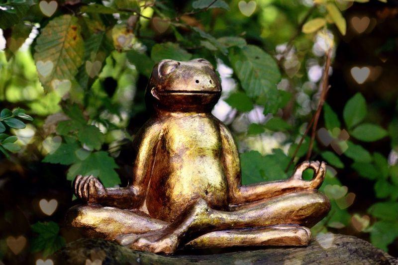 Ob Frosch oder Mensch, in seiner Mitte sein lässt einen golden, herzumwoben scheinen.