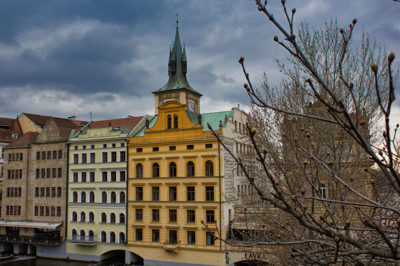 Building Exterior Architecture Built Structure Sky Building Tree Cloud - Sky Bare Tree Nature No People Tower Day City The Past History Travel Destinations Window Outdoors Low Angle View Plant Spire  Streetphotography Street Photography Street Prague