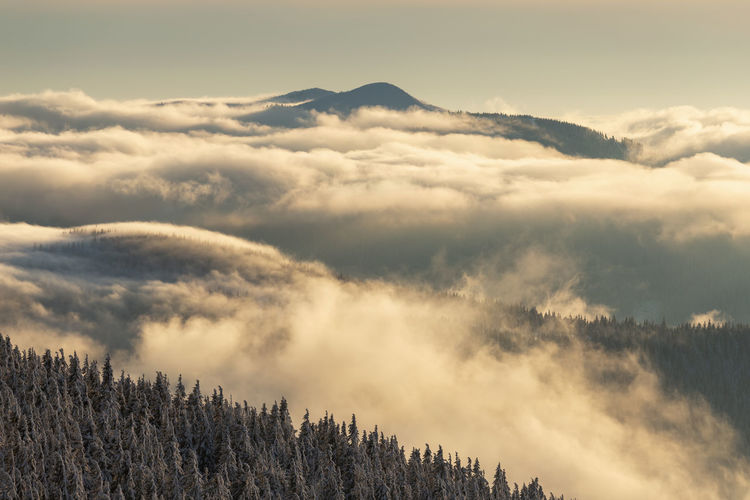 The beauty of winter on the snowy mountains at sunset. vladeasa mountains - romania