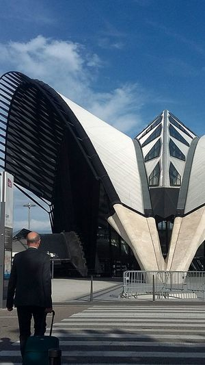 Architecture Built Structure Modern Famous Place Tourism Culture ArtWork Arch Santiago Calatrava Architecture Airport St Exuperi Blue Sky Amazing Lyonnais Façade Sky Thats Life Summertime