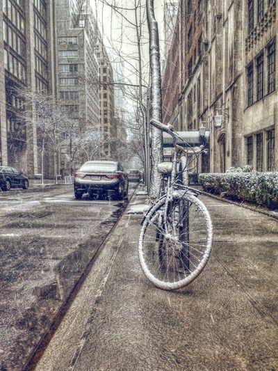 spring life in New york Walking Around Vscocam HDR Winter Bike Snow Newyork Manhattan