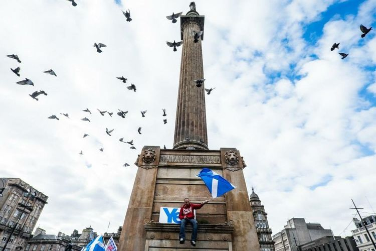 Capturing Freedom Glasgow  Scotland Independence Fly Birds Moment