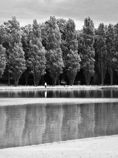 Stand Still Tree Outdoors Nature Beauty In Nature Park Noir Et Blanc Bnw Blackandwhite Sky Lines Armony Calm Human And Nature Reflection Nature_perfection Vertical Omd France M43 EeYem Best Shots Week On Eyem The Week On EyeEm